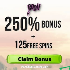 Booi Casino 250% Bonus and 125 Free Spins banner for PlayBestCasino.net is on photo.