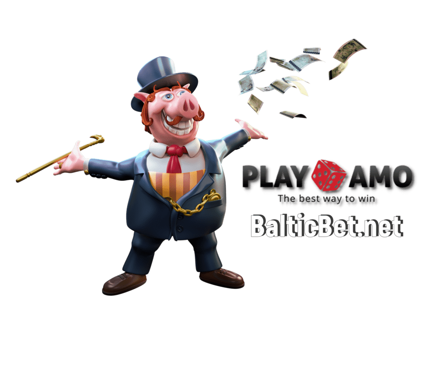 BalticBet.net and Playamo Casino is on photo.