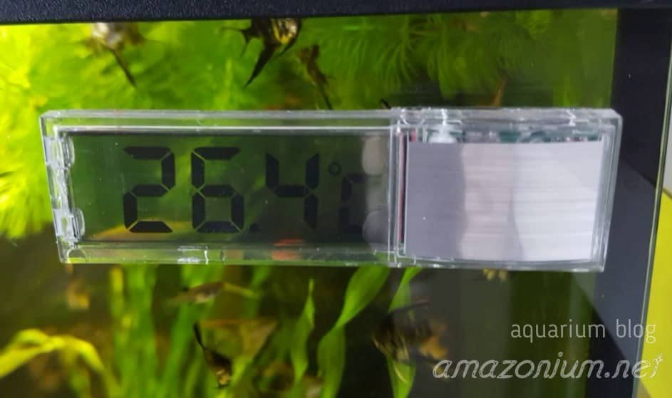 digital thermometer can be seen in this image.