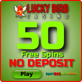 50 free spins without deposit in Lucky Bird Casino is on this photo.