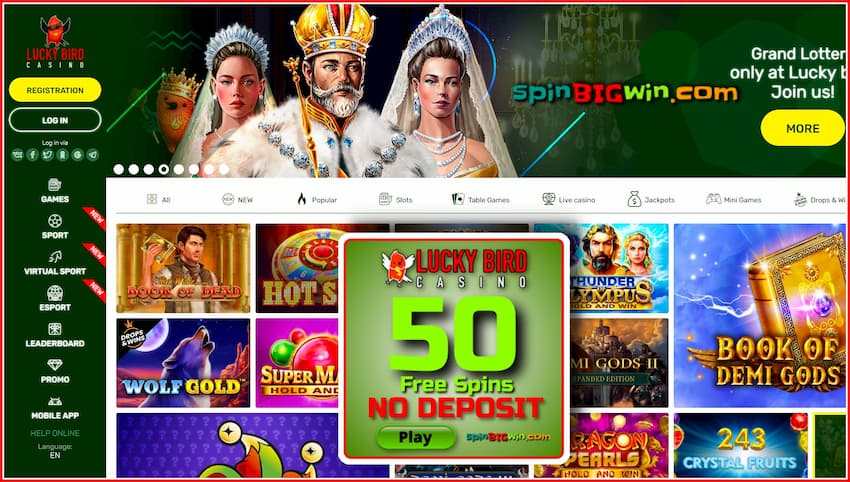 Lucky Bird Casino (Review) 50 Free Spins No Deposit are in this photo.